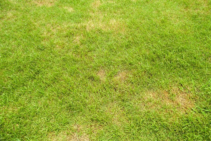 how to remove rust from lawn mower blades